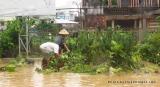Bình Định